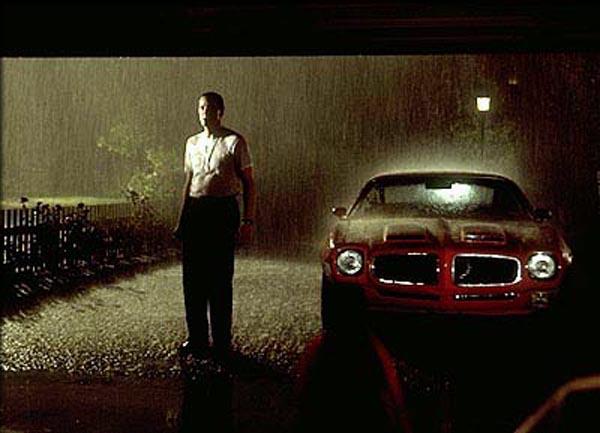 american-beauty-rain.jpg