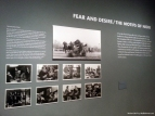 Stanley Kubrick at LACMA: The Killing and Fear and Desire/The Motifs of Noir