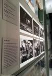 """Kubrick's """"Dr. Strangelove"""" (1964): The PieFight"""
