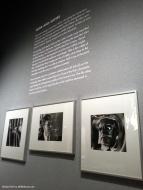 Stanley Kubrick: Noir and Satire
