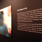 "Kubrick and ""Eyes Wide Shut"" - The Mind's Eye"